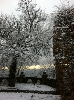 Snowy winter view in the garden