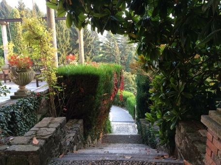 Magnolia-shaded stone staircase