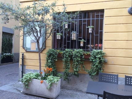"Check out the ""planters"" affixed to the window!"