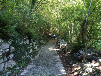 The path at the beginning of the hike