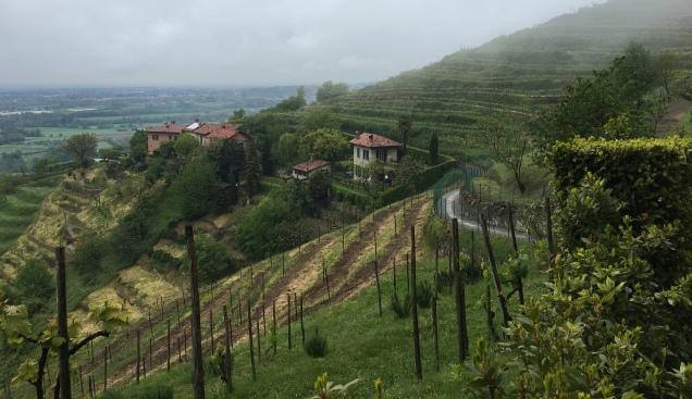 On a walk south of Montevecchia