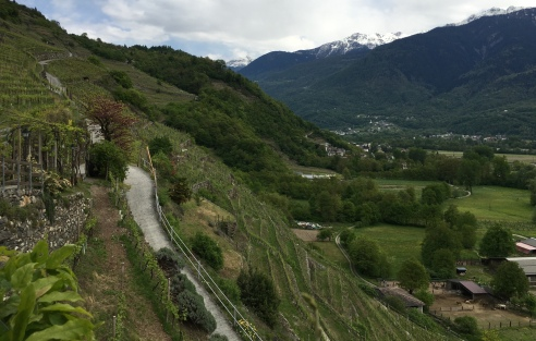 View from Ristorante Frasca, owned by Nino Negri
